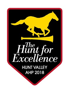 2018: AHP The Hunt for Excellence